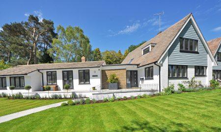 home landscape green lawn